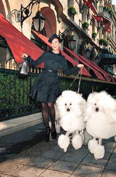 Cote de Pablo Walks French Poodles Down Paris' Fashionable Avenue Montaigne