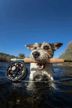 Hardy fly fishing