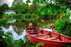 Łódka, Dom, Jezioro, Las