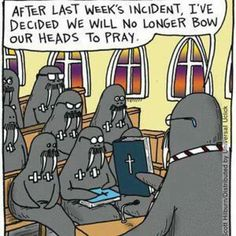Walrus Church