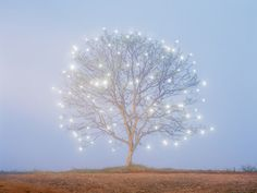 Tree of Lights...this could be painted on canvas with holes poked for the lights.