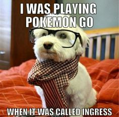 Hipster pup was playing Pokemon Go when it was called Ingress.