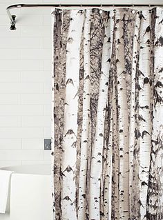 Birch forest shower curtain   Simons