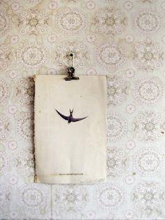 Andorinha. Hirondelle. Swallow.