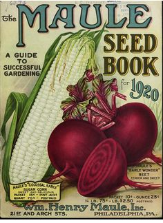 The Maule seed book for 1920 beet carrot   From our collecti…   Flickr
