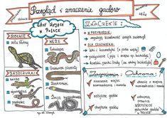 Food Hacks, Hand Lettering, Bullet Journal, Study, Science, Education, School, Diy, Geography