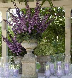 purple... so decadent