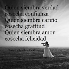 Quien siembra amor, cosecha felicidad #motivacion #superacion #reflexiones #exito