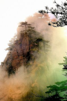 #Nature - Huangshan (China) #onlineartgallery - #contemporaryart - #artphotography - #spotuart - online art gallery - contemporary art - art photography source : http://www.flickr.com/photos/chenroom/5528176325
