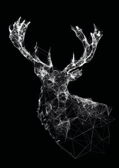Art Illustration / Stag by Jordan Rogers Art And Illustration, Animal Illustrations, Graphic Art, Graphic Design, Geometric Art, Geometric Animal, Geometric Drawing, String Art, Design Art