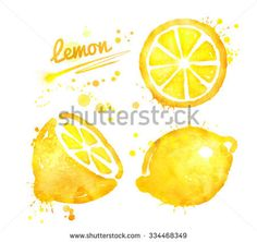 Hand drawn watercolor half, whole and slice of lemon with paint splashes.