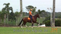 INVICTA DAS ÁGUAS JM