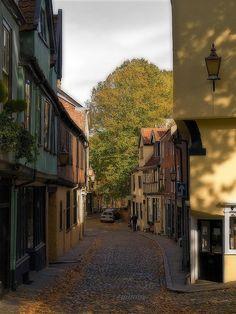 Elm Hill by Gerry Balding. Norwich, England