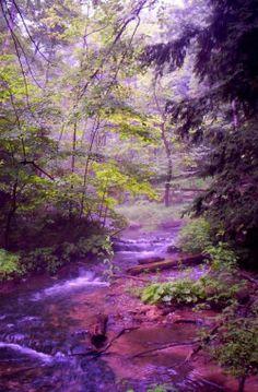 Scenic Pictures | Konu: Harika Doğa Manzaraları Süper Manzara Resimler (2013)