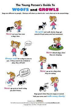 Some great tips to teach kids about how it interact with dogs https://www.facebook.com/photo.php?fbid=687993517890534