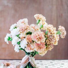 Carnation Wedding Bouquet, Carnation Centerpieces, Bridal Bouquet Fall, Fall Wedding Bouquets, Carnations, Wedding Centerpieces, Flower Bouquets, Wedding Boquette, Neutral Wedding Colors