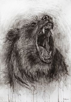 ANIMALS - Charcoal drawing on Behance