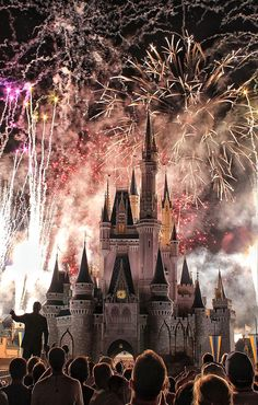 Disney Wishes - Magic Kingdom Fireworks Display - Viewing it from the 'Wishes Cruise' is awesome.