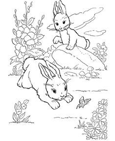 Farm animal coloring page | Wild rabbits play