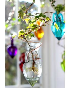 Charmant Our Clear Spiral Hanging Water Garden, (plant Rooter) Has A Beautiful,  Distinctive