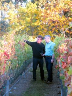Taking a stroll around the vineyards - we love how beautiful everything is this time of year!