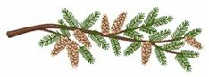 Pine Branch embroidery design