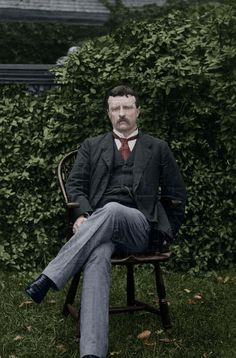 Theodore Roosevelt, Historian, Presidents, Writer, Politics, United States, American, Color, Families