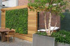 Jardim vertical - www.casaecia.arq.br Cursos on line: Design de Interiores - Paisagismo e Jardinagem