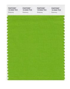Color of the Year 2017 by Pantone(r): Greenery or tangy yellow-green