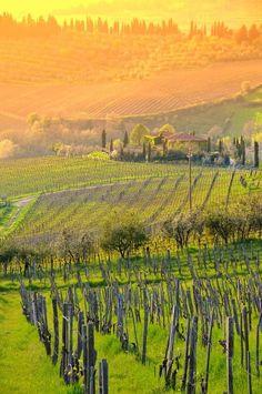 Increíble paisaje del Chianti, en Toscana, Italia - Simplemente mágico