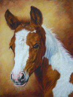 Horse Painting - Fancy Portrait by Margaret Stockdale Horse Portrait, Portrait Art, Pencil Portrait, Cross Paintings, Animal Paintings, Pastel Paintings, Horse Artwork, Horse Drawings, Equine Art