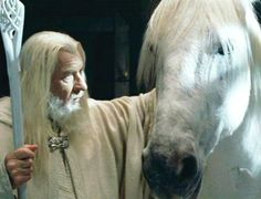 Gandalf and Shadowfax-the lord of all horses. Shadowfax was said to have been foaled in the morning of the world.