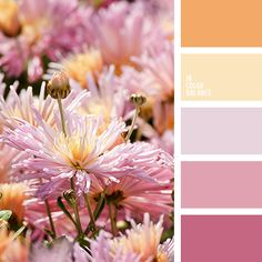 Bright, sunny palette in soft, warm colors. My heart immediately becomes a good and harmonious, and all the hardships recede. Pastel colors soften and balance the atmosphere. Delicate shades of yellow, pink, lilac complement richer colors - orange and hot pink. A suitable range to create a feminine and delicate interiors.