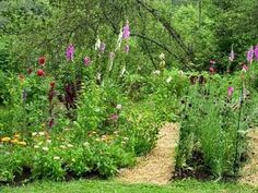 Growing a Garden this Spring? The 7 Habits of Successful Gardeners