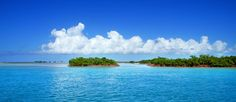 Turks and Caicos Islands Boat Cruise and Fishing Charters, Bonefishing, Deepsea, Bottom Fishing