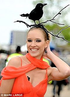 30 Crazy Hats from the Kentucky Derby and Other Horse Races. Another stuffed corbie,or perhaps it's a chough. Crazy Hat Day, Crazy Hats, Funky Hats, Cool Hats, Derby Outfits, Silly Hats, Ascot Hats, Crazy Outfits, Derby Day