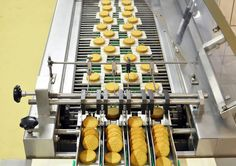 conveyor belt with biscuits in a food factory - machinery equipment , Conveyor Belt, Business Icon, A Food, Biscuits, Sausage, Dairy, Cheese, Meat, Food Equipment