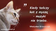 Władysław Grzeszczyk
