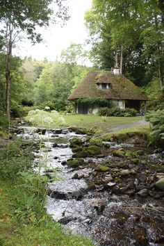 Old cottage and stream, Ireland