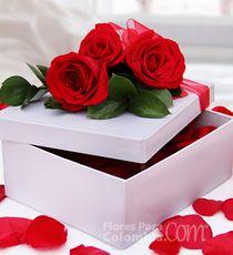 Flores para Colombia - Romance-Para enamorarla m�s