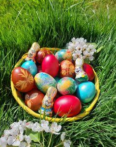 Easter Eggs, Food, Eten, Meals, Diet