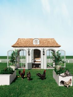 13 Outrageous Chicken Coops