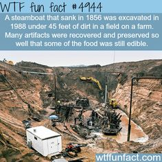 WHOA! ...After 132 Years!?!  ~WTF fun facts: More weird &  interesting facts HERE!