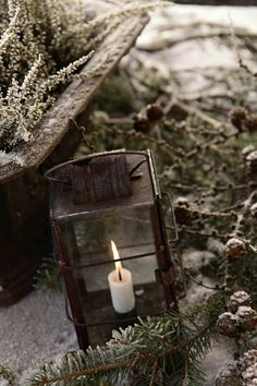 Old Rusty Lantern...white candle & snow kissed pine.