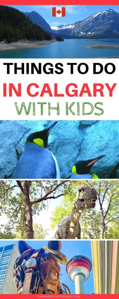 Things to do in Calgary with Kids the best things to do in Calgary with kids from a local I was raised just outside of the city, my kids were born here, and we share the best things to do in Calgary with kids. Backpacking Canada, Canada Travel, Canada Trip, Travel With Kids, Family Travel, Family Vacations, Voyage Canada, Stuff To Do, Things To Do