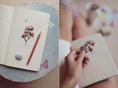 mood (rose, dry flower, pastel)  Sonya Khegay