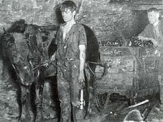 coalminer boy & his pit pony -- a hard life for both