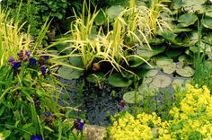 Zdroj: http://www.nrgardendesign.co.uk/images/lrg_water_features_03.jpg