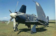 RAN Sea Fury 115 at Bankstown Australia in the 70's