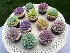 succulent cupcakes- maybe Geeda could make these? Fondant Cupcakes, Cupcake Cakes, Succulent Cupcakes, Garden Cupcakes, Cactus Cake, Cactus Cupcakes, Buttercream Flowers, Wedding Cupcakes, Bridal Shower Cupcakes